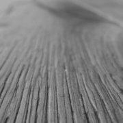 Holzdiele im Dielenboden